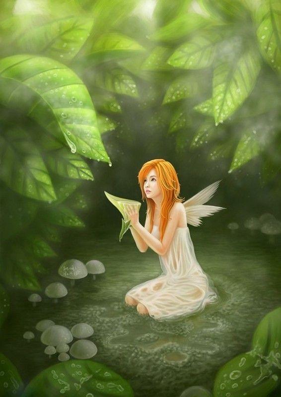 ***Fairy***